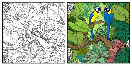 Wild jungle with two parrots of macaw sit on branch over  forest lake color and black contour line drawing for coloring on a white background Illustration