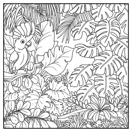 Wild jungle with cockatoo Alba parrot perched on branch black contour line drawing for coloring on a white background. Illustration