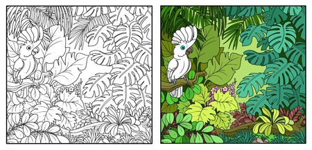 Wild jungle with cockatoo Alba parrot perched on branch color and black contour line drawing for coloring on a white background. Stock Illustratie