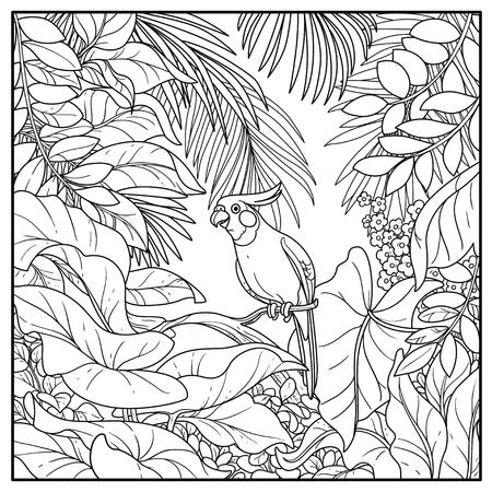 Wild jungle with corella parrot perched on branch black contour line drawing for coloring on a white background.