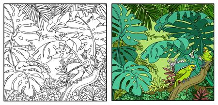 Wild jungle with amazon parrot sit on branch color and black contour line drawing for coloring on a white background