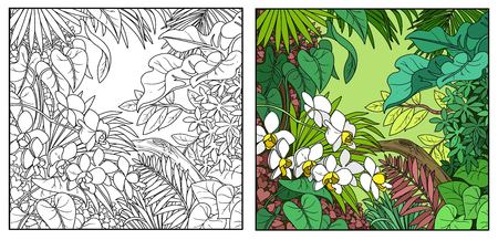 Wild jungle color and black contour line drawing for coloring on a white background