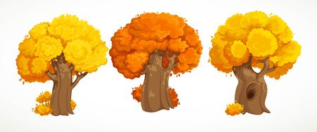 Set of old thick trees with autumn yellow foliage  drawing isolated on white