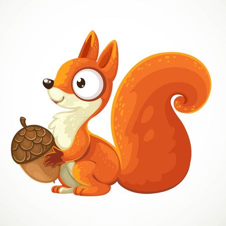 Cute squirrel cartoon holding an acorn in her paws isolated on white background