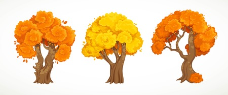 Set of old thick trees with autumn yellow and orange foliage vector drawing isolated on white background