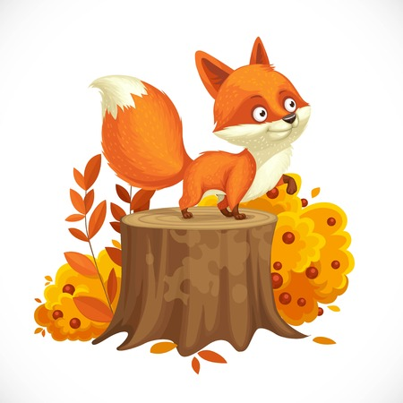 Cute little fox stands on a big stump next to an autumn bush. Isolated on white background