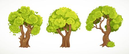 Set of old thick trees with summer or spring green foliage vector drawing isolated on white Ilustração