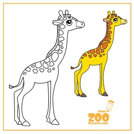 Simpatico cartone animato piccolo colore della giraffa e delineato su un bianco per la pagina da colorare Vettoriali