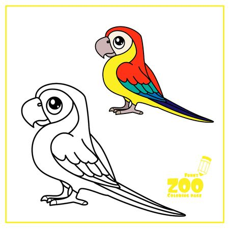 Cute cartoon Ara parrot color and outlined on a white  for coloring page