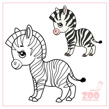 Cute cartoon little zebra color and outlined on a white for coloring page