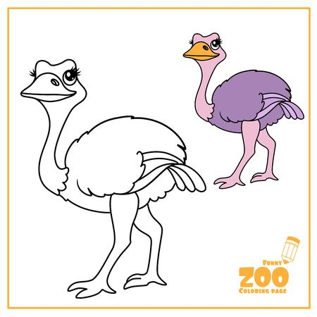 Cute cartoon ostrich color and outlined on a white  for coloring page