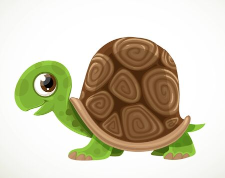 Cute cartoon green turtle with a big tortoise shell isolated on a white background
