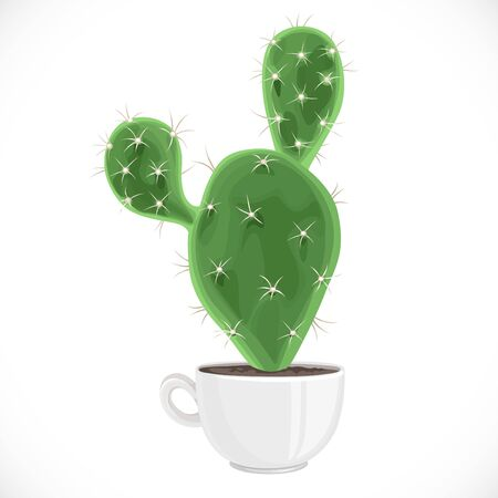 Large prickly cactus planted in a white ceramic cup isolated on white background 向量圖像