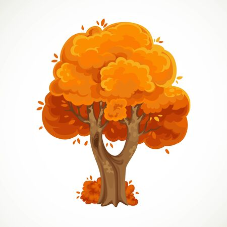 Autumn bifurcated tree  with orange foliage vector drawing isolated on white background 向量圖像