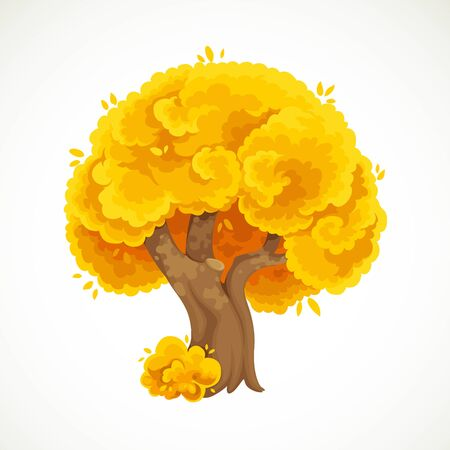 Autumn big old tree with yellow foliage vector drawing isolated on white background