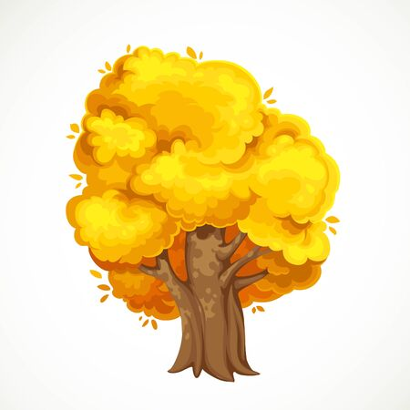 Autumn old tree with yellow foliage vector drawing isolated on white background