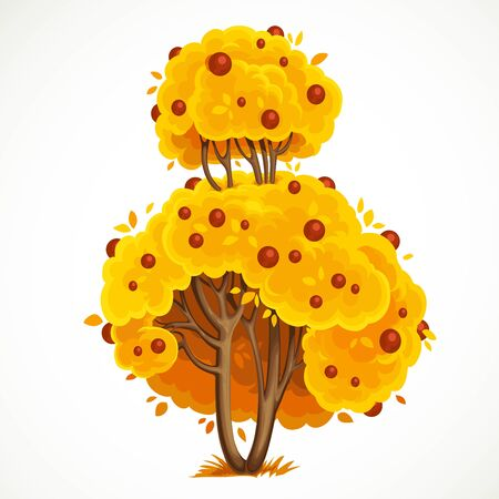 Tall bush with a lush crown of yellow autumn leaves and red berries vector drawing isolated on white background