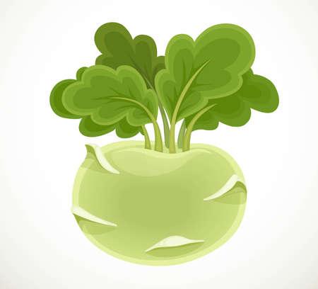 Kohlrabi cabbage isolated on white background