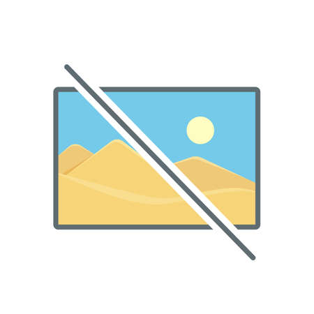 Disable image no photo photography picture icon. Vector illustration