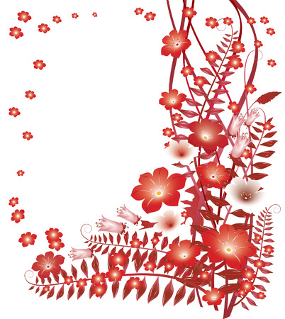 rubin: Delicate red flowers on white background