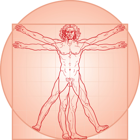The Vitruvian man, or so called Leonardo da Vinci man. Detailed drawing. In Red. Illustration