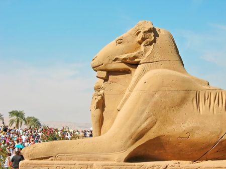 Ram-headed sphinx in front of Karnak Temple. Location: Luxor, Egypt. photo