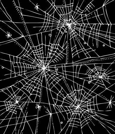 spider net: Web background
