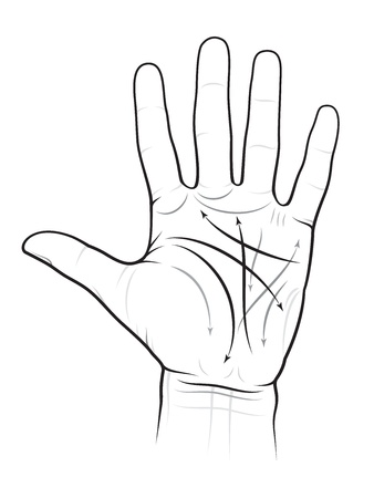 palmistry: Chiromancy Chart of a Palm: lines and ways Illustration
