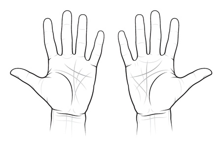 Graphique chiromancie des Palmes: les lignes et les moyens, EPS-8 Vecteurs