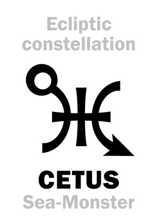 original single: Astrology Alphabet: sign of CETUS (The Sea-Monster), constellation of Ecliptic (between Aquarius, Pisces and Eridanus). Hieroglyphics character sign (original single symbol).