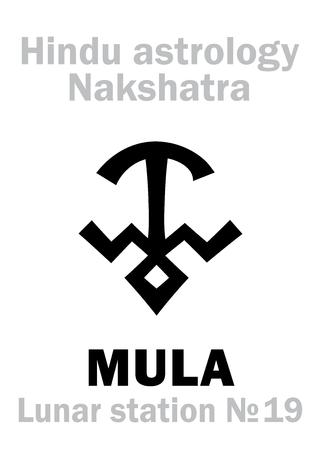 ecliptic: Astrology Alphabet: Hindu nakshatra MULA (Lunar station No.19). Hieroglyphics character sign (single symbol). Illustration