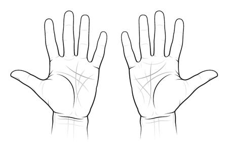 Gráfico de quiromancia de las palmas: líneas y caminos, EPS-8 Ilustración de vector