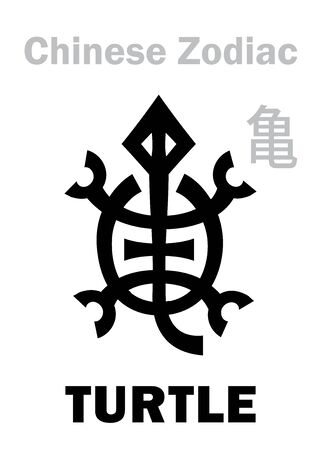 """Astrology Alphabet: TURTLE / TORTOISE [亀] sign of Chinese Zodiac. Also: Black Tortoise (""""The Dark Warrior""""), One of four Legendary auspicious beasts, Guardian of The North, supporting of The Earth. 向量圖像"""