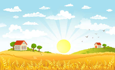 morning nature: Countryside panorama in the morning Illustration