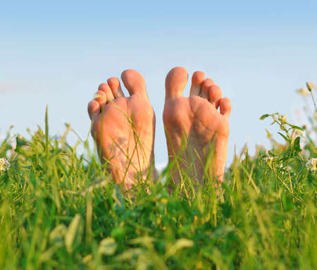 Feet having a rest on a green soft grass in the summer day.
