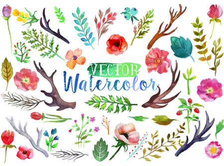 Vector akvarel akvarel květy a listy. Ilustrace