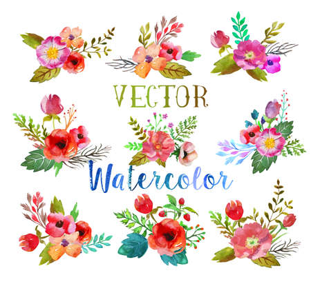 red color: Vector watercolor buttonholes. Illustration