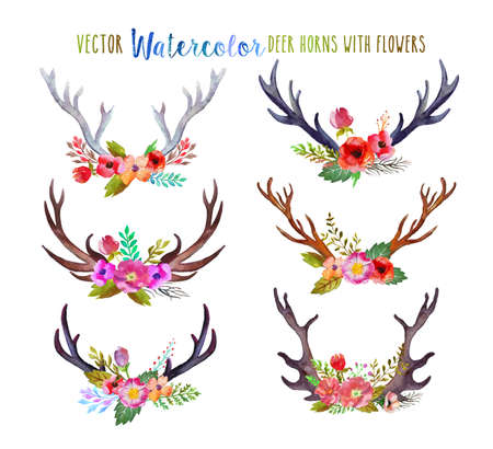 reindeers: Vector watercolor deer horns Illustration
