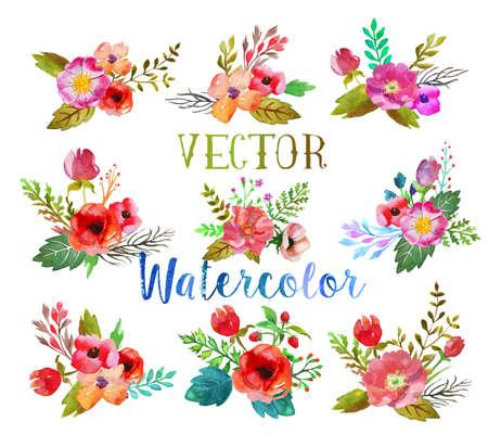 Vektor akvarel knoflíkové dírky. Ilustrace