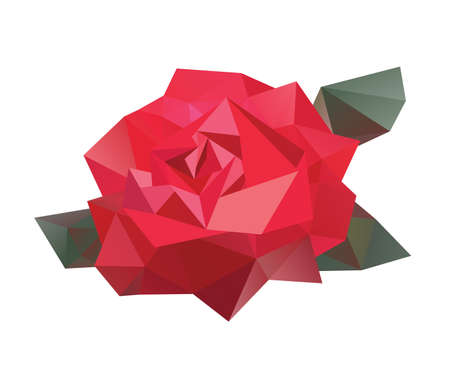 Geometric vector flower Vector