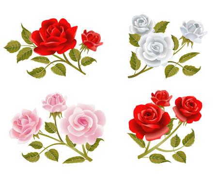 red rose bouquet: Vector rose buttonholes