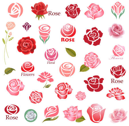 Set of rose flower design elements Vettoriali