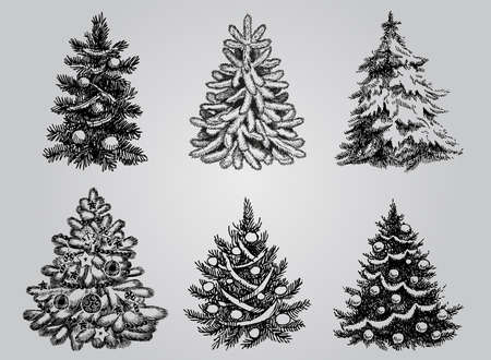 pine trees: Silhouetted Christmas Tree Vector Pack to create holiday cards, backgrounds and decorations. Illustration