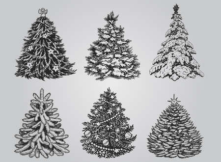 silhouetted: Silhouetted Christmas Tree Vector Pack to create holiday cards, backgrounds and decorations. Illustration