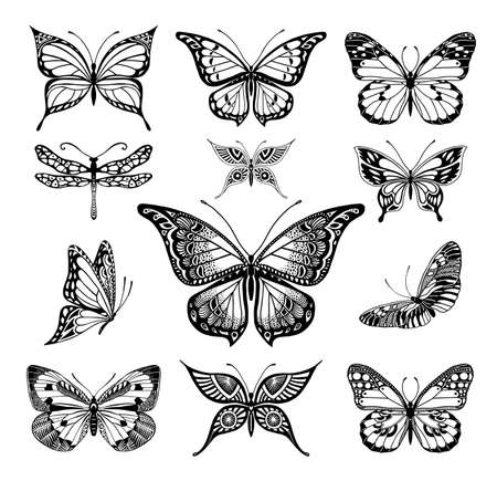 dragonflies: Illustrations of tatto style butterflies Illustration