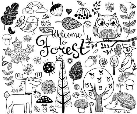 ecosystems: Vector forest design  elements in doodle style, handdrawn animals and insects, trees and plants