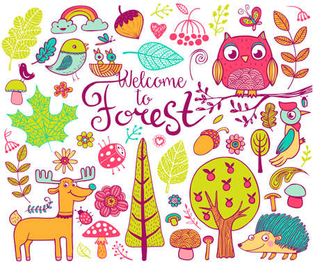 stick bug: Vector forest design  elements in doodle style, hand-drawn animals and insects, trees and plants Illustration
