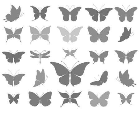 Silhouettes de beaux papillons illustration vectorielle.