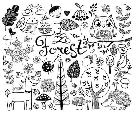 Vector forest design  elements in doodle style, hand-drawn animals and insects, trees and plants Illustration