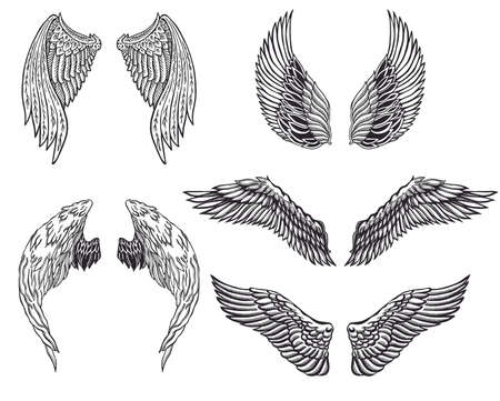 tattoo wings: Heraldic wings set for tattoo or mascot design.